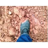 análise de solo seco Limão