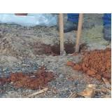 coleta de solo para amostragem Ibirapuera