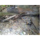 empresa de análise de águas de rios Lauzane Paulista