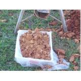 relatório de amostragem de solo Socorro