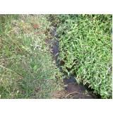 serviço de análise de água de nascente Raposo Tavares